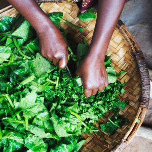 Afrikanisch Gerichte kochen in Malawi, das Bild aus Afrika erhältlich im Onlineshop