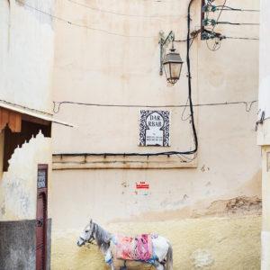Altstadt von Fes in Marokko, Bild aus Afrika erhältlich im Onlineshop
