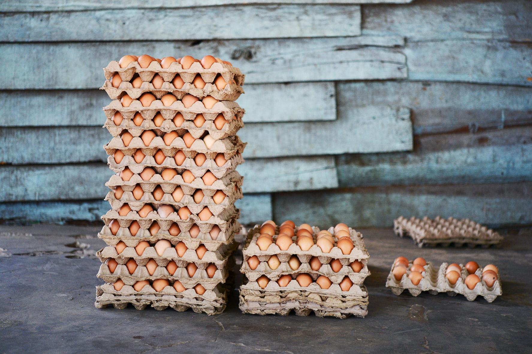 Eierpaletten auf dem Market in Sambia, Bild aus Afrika erhältlich im Onlineshop