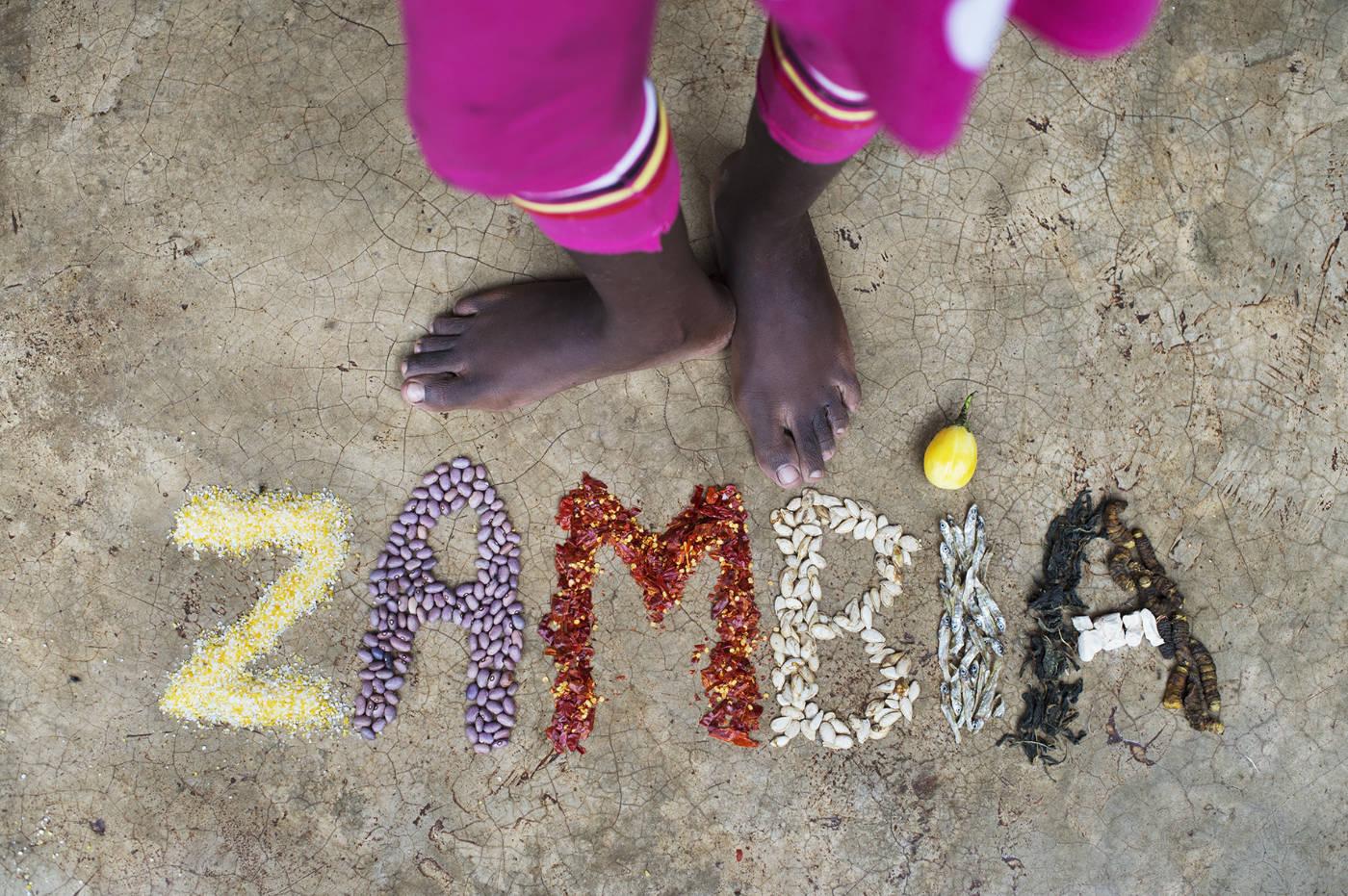 Essen in Sambia. Afrikanische Zutaten für das Afrika Kochbuch Eating with Africa