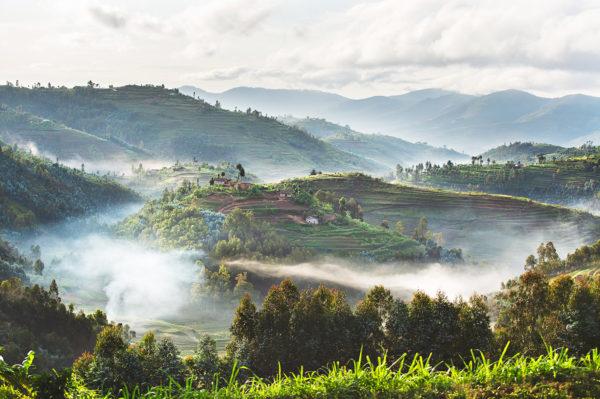 Landschaft in Ruanda, Bild aus Afrika erhältlich im Onlineshop